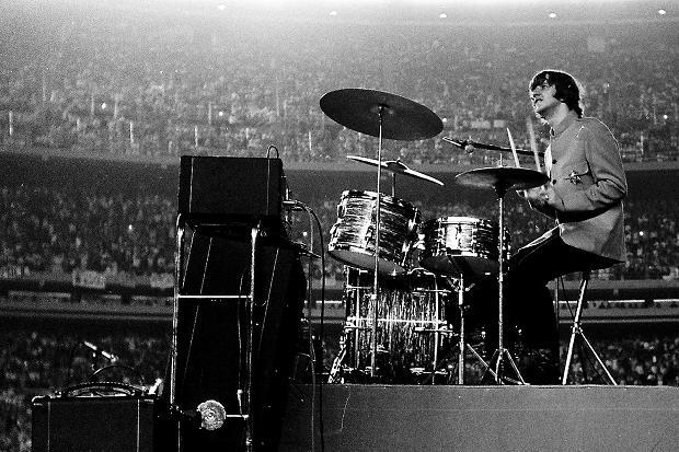 Ringo Shea
