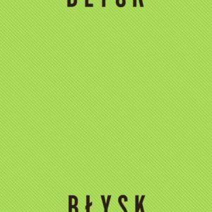 Robert Ligiewicz dograł się na album Hey- Błysk