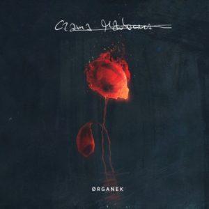 Perkusista Robert Markiewicz nagrał płytę Czarna Madonna zespołu Organek