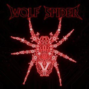 Beata Polak perkusistką na płycie Wolf Spider- V